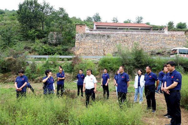 专家组在北柴胡生态种植模式试验基地展开讨论