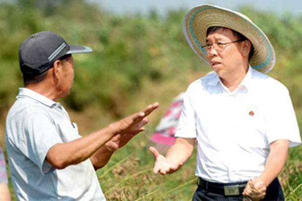 李安平(右)在田间地头考察中药材